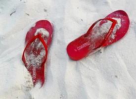 Bunte Sandalen sind angesagt