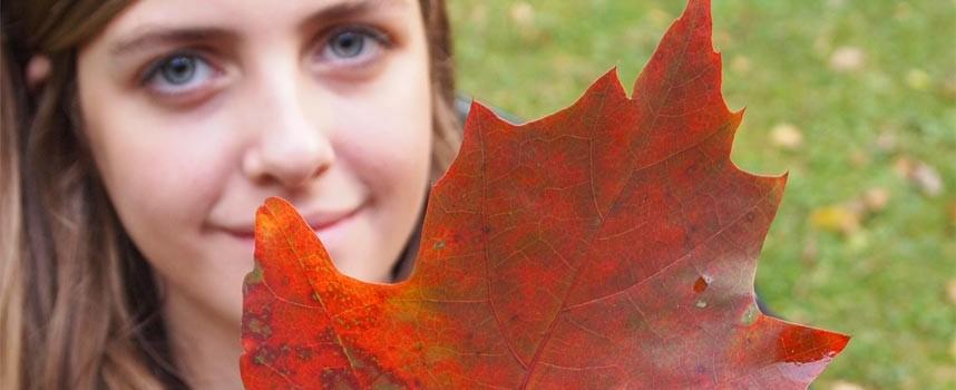 Herbsttrend: 70ies Revival