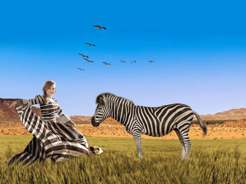 Quelle couleur sous les rayures ? - Page 3 Streifenkleid-Zebra-Shooting-800x600