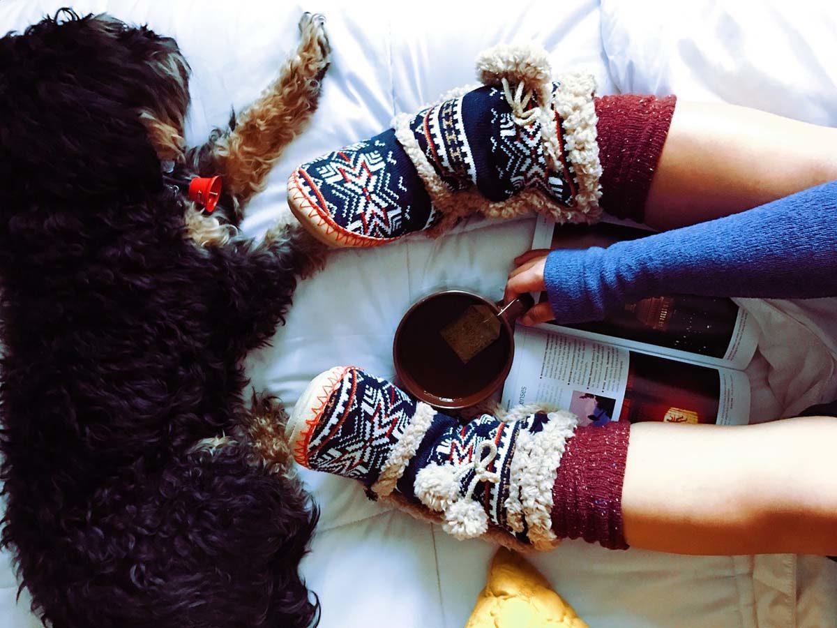 Hund Tee Gemütlichkeit